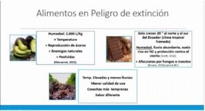 Alimentos en peligro de extinción