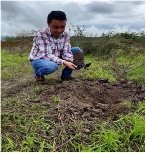 Campaña de reforestación UAS